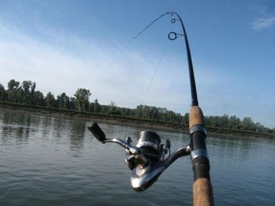 Выбор спиннинга для начинающих рыболовов
